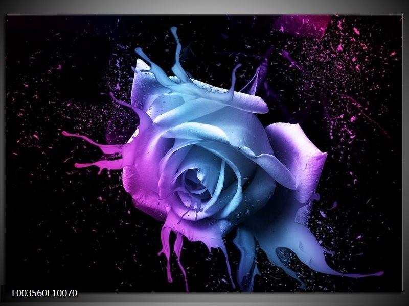 Glas schilderij Roos | Paars, Blauw, Zwart