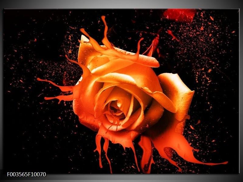Glas schilderij Roos | Oranje, Zwart