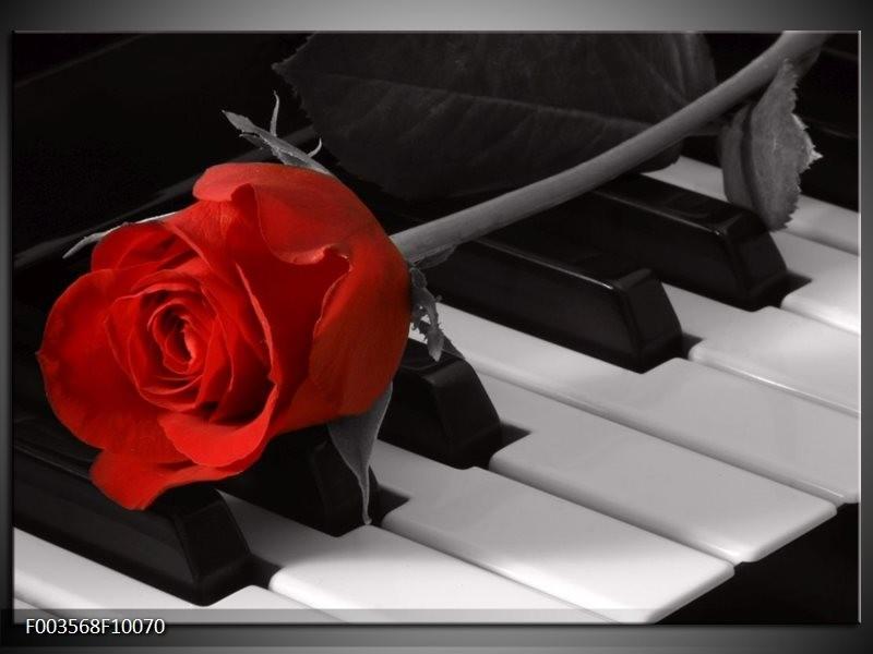 Glas schilderij Roos | Rood, Wit, Zwart