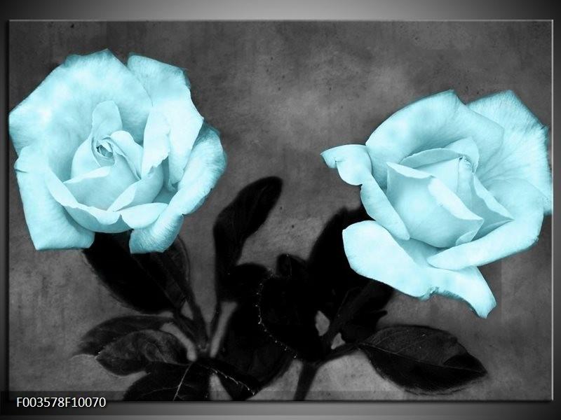 Glas schilderij Roos   Blauw, Grijs, Zwart