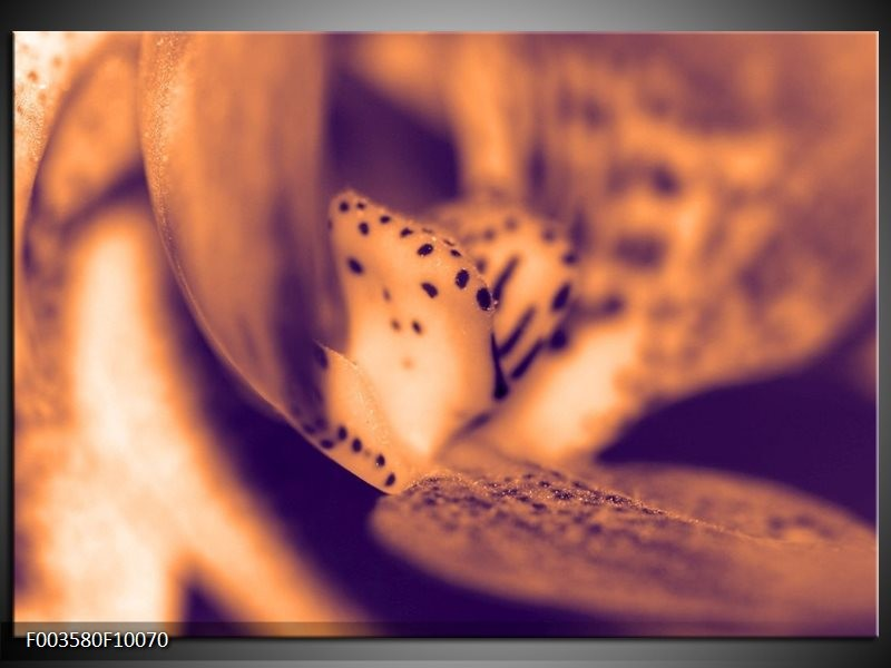 Glas schilderij Bloem | Bruin, Grijs