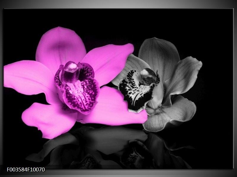 Foto canvas schilderij Orchidee   Paars, Grijs, Zwart
