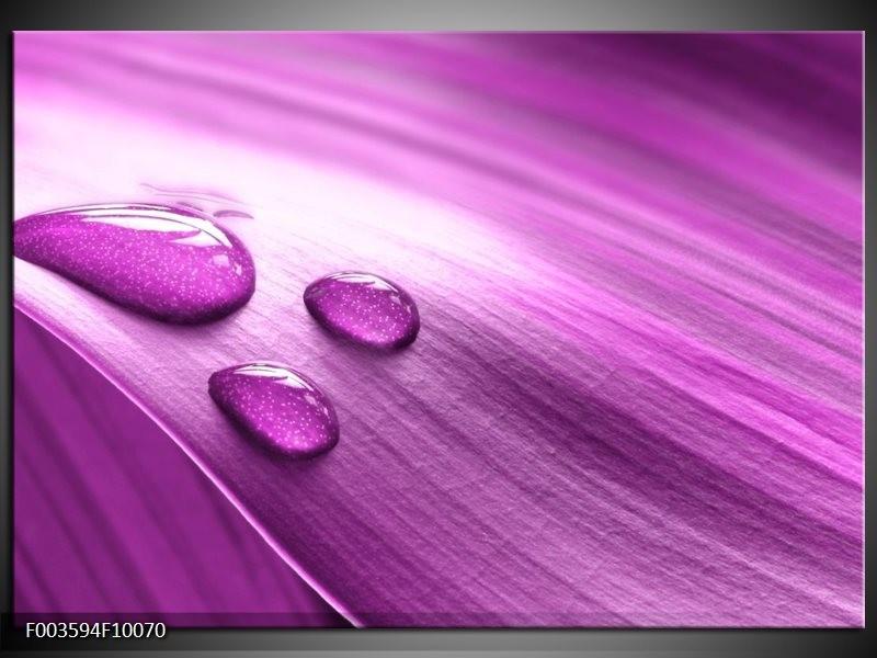 Foto canvas schilderij Druppel | Paars, Wit