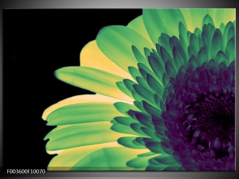 Foto canvas schilderij Bloem | Groen, Geel, Zwart
