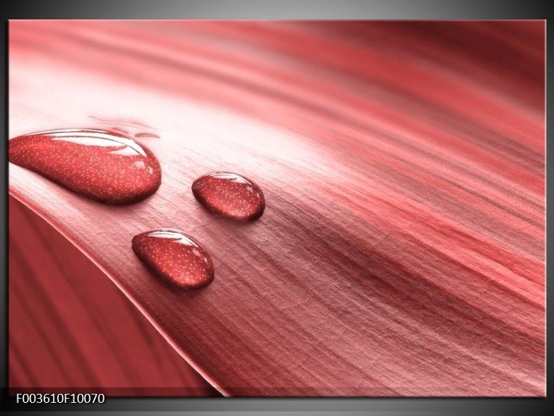 Foto canvas schilderij Druppel | Roze, Wit