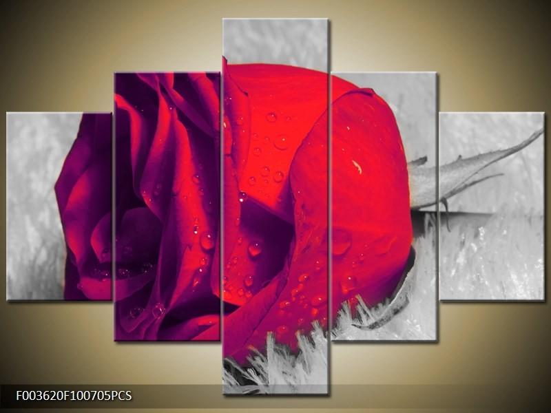 Canvas schilderij Roos | Rood, Grijs | 100x70cm 5Luik