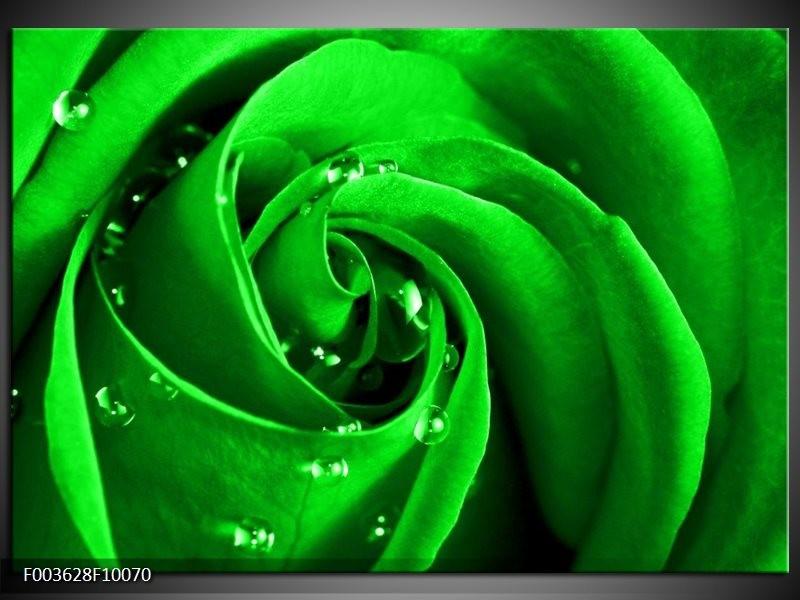 Foto canvas schilderij Roos | Groen, Zwart