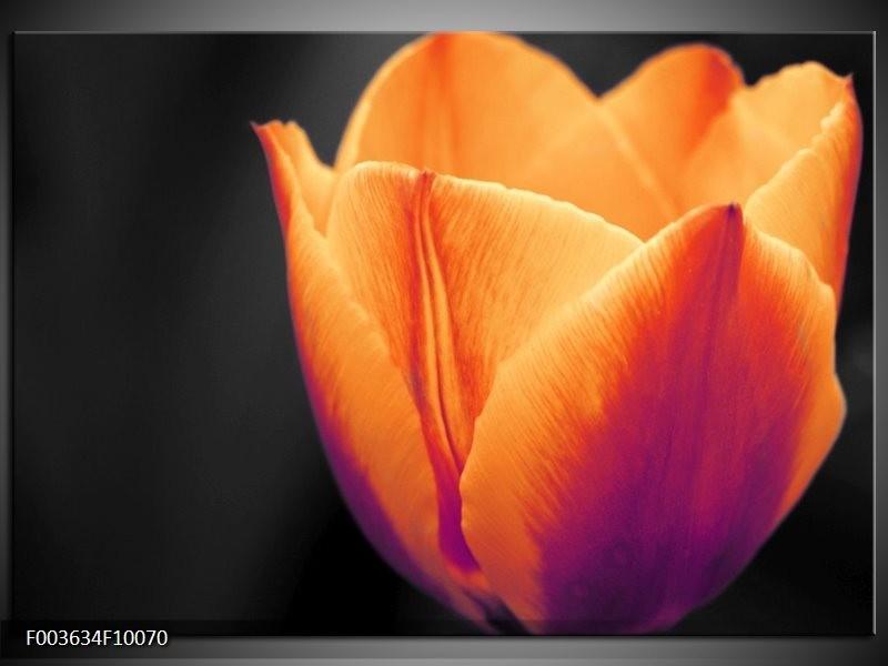 Glas schilderij Tulp   Oranje, Geel, Zwart