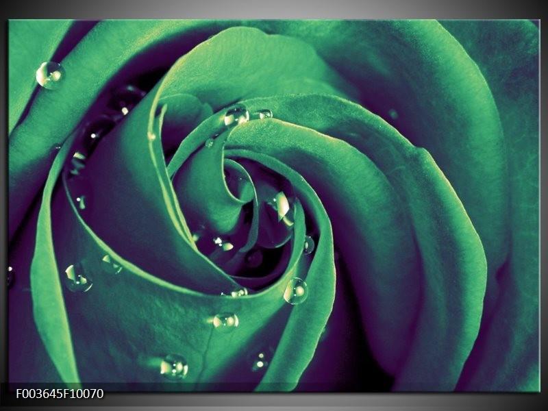 Glas schilderij Roos | Groen, Zwart