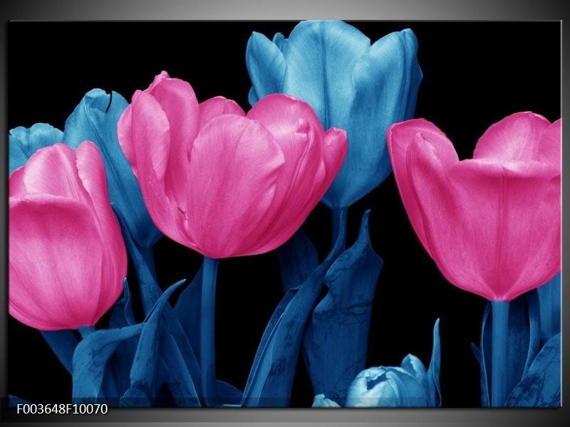 Foto canvas schilderij Tulp | Roze, Blauw, Zwart