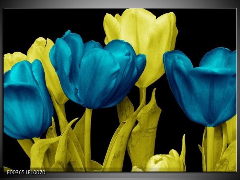 Foto canvas schilderij Tulp   Blauw, Geel, Zwart