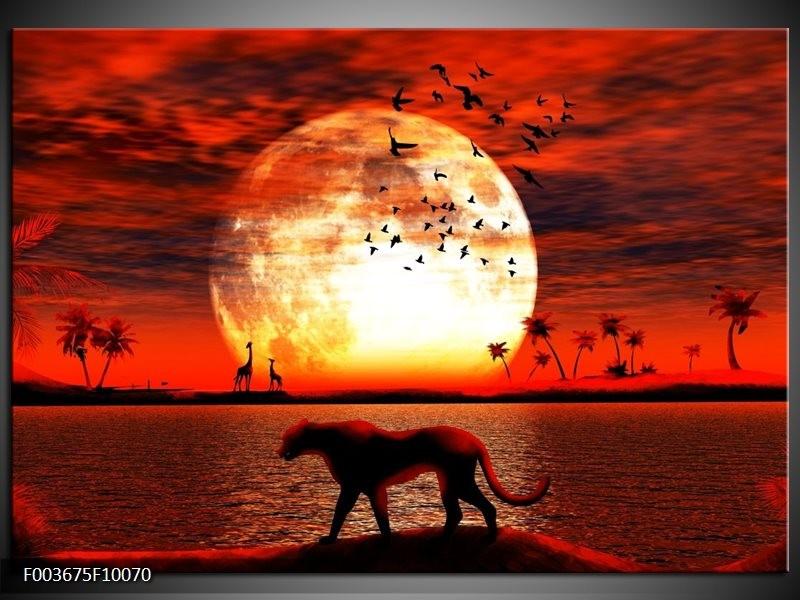 Glas schilderij Natuur | Rood, Wit, Zwart