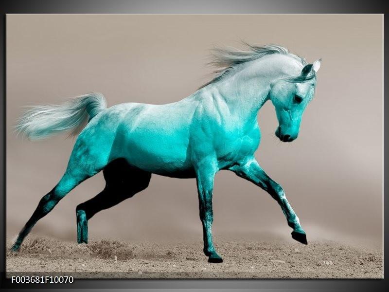 Glas schilderij Paard | Blauw, Grijs