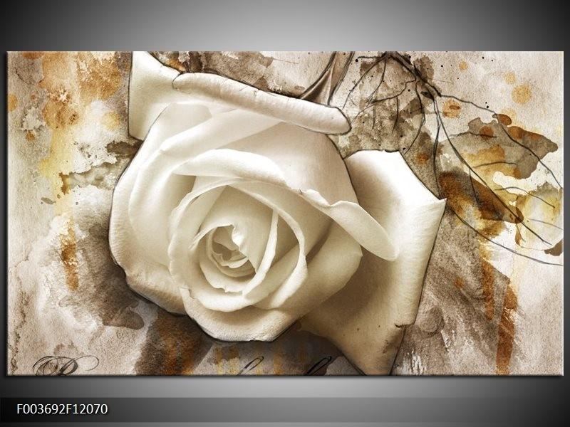 Canvas schilderij Roos | Wit, Bruin | 120x70cm 1Luik