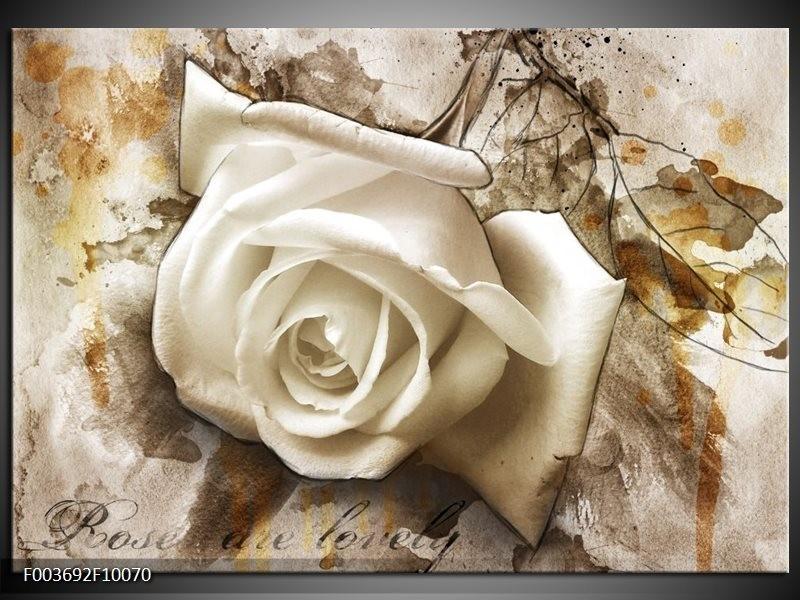 Glas schilderij Roos | Wit, Bruin