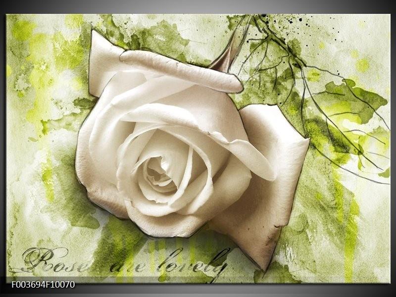 Foto canvas schilderij Roos | Groen, Wit