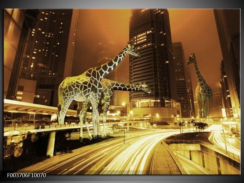 Foto canvas schilderij Giraffe | Geel, Bruin, Zwart