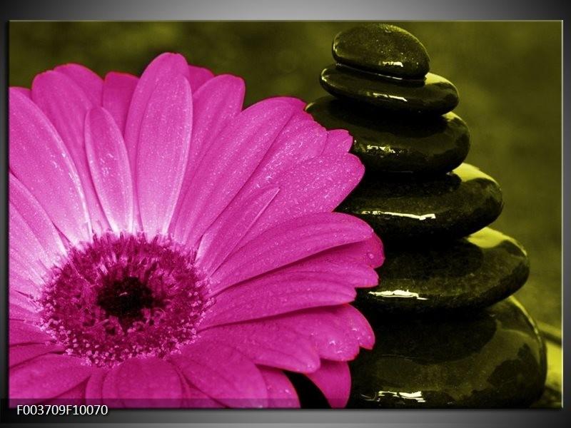 Foto canvas schilderij Bloem | Roze, Zwart, Groen