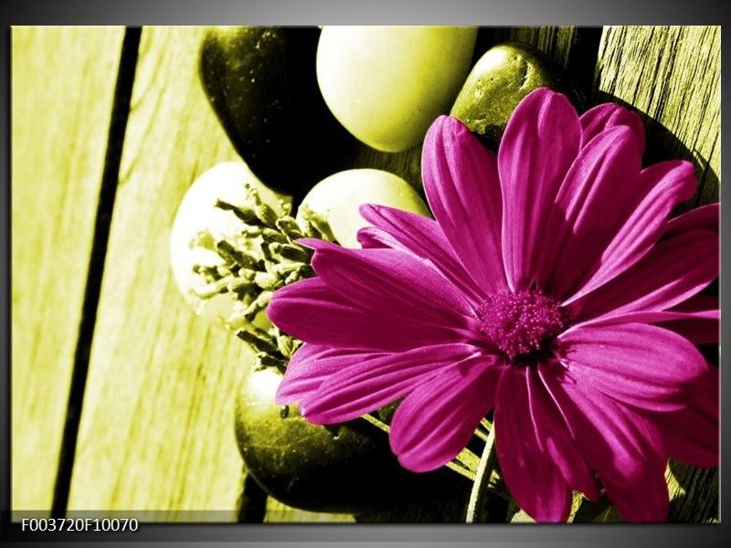 Glas schilderij Bloem | Roze, Groen, Wit