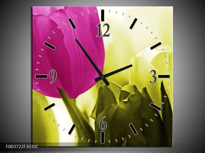 Wandklok op Canvas Tulp   Kleur: Roze, Groen, Wit   F003722C