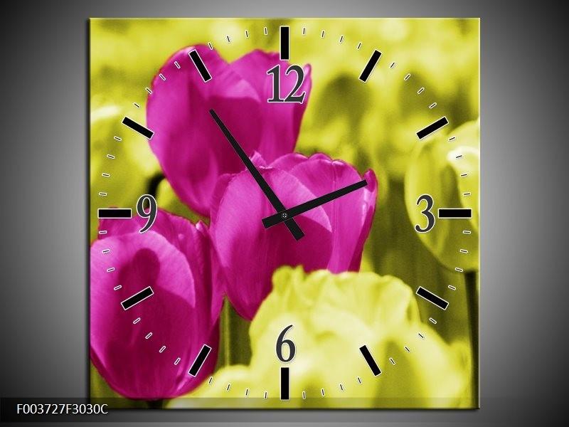 Wandklok op Canvas Tulp | Kleur: Roze, Groen, Wit | F003727C