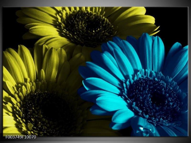 Glas schilderij Bloem | Blauw, Zwart, Groen