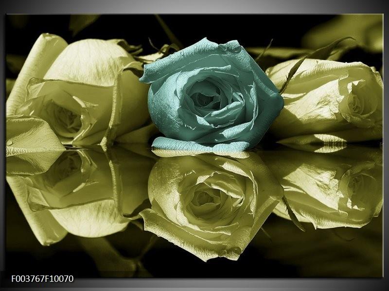 Foto canvas schilderij Roos | Blauw, Zwart, Groen