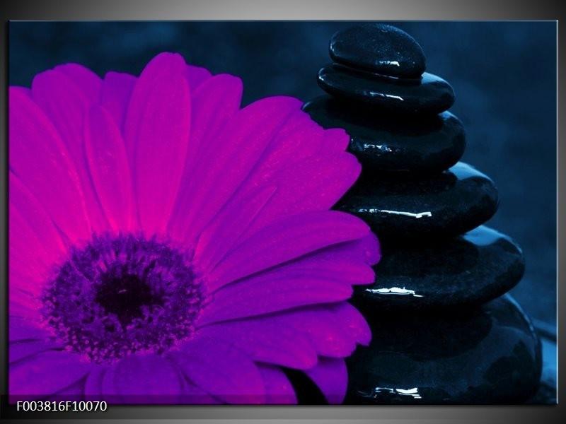 Glas schilderij Bloem | Paars, Bruin, Wit