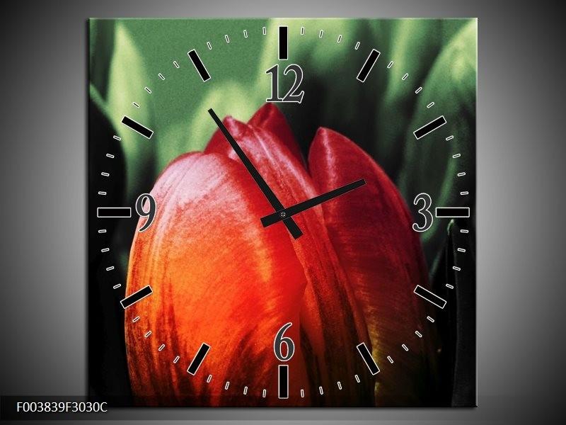 Wandklok op Canvas Tulp   Kleur: Rood, Groen, Zwart   F003839C