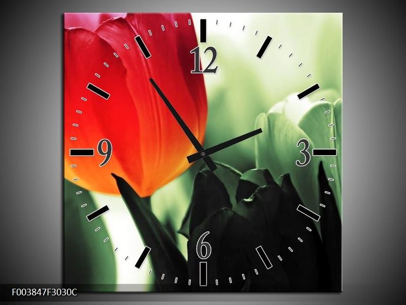 Wandklok op Canvas Tulp | Kleur: Rood, Groen, Zwart | F003847C
