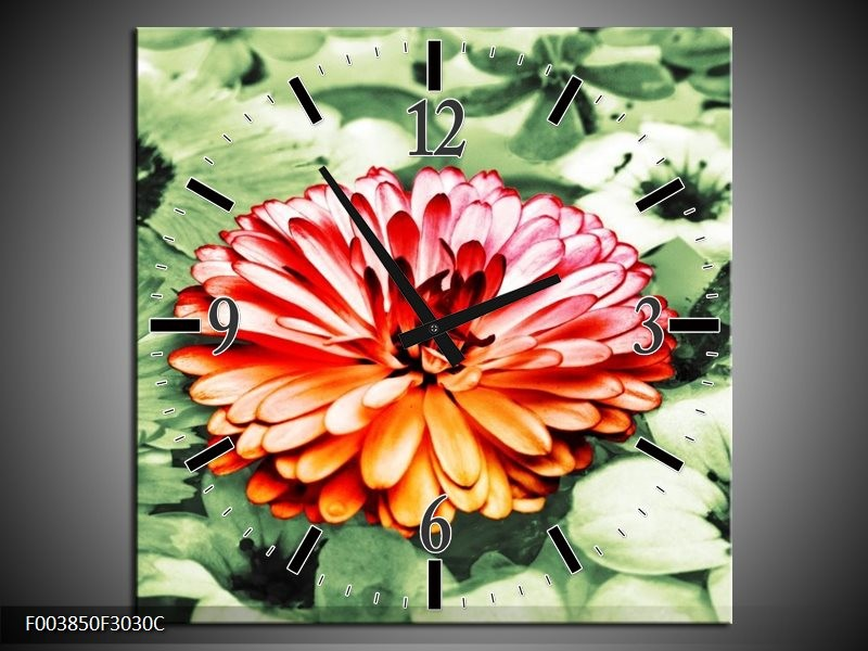 Wandklok op Canvas Bloem | Kleur: Rood, Groen, Wit | F003850C
