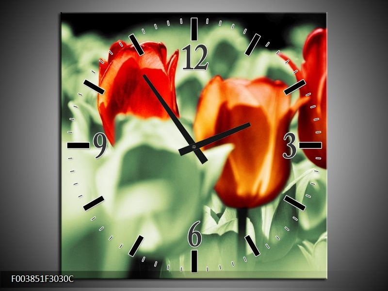 Wandklok op Canvas Tulp | Kleur: Rood, Oranje, Groen | F003851C