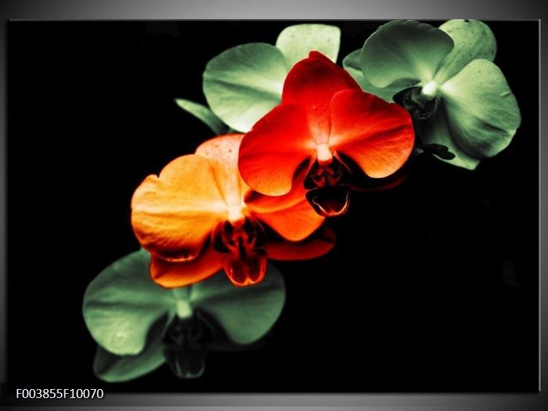 Foto canvas schilderij Orchidee | Rood, Groen, Zwart