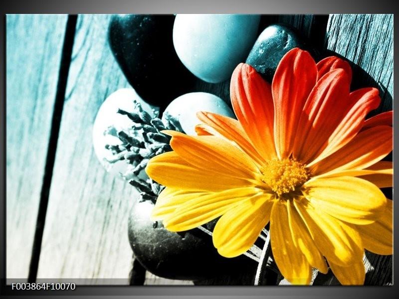 Foto canvas schilderij Bloem | Geel, Oranje, Blauw