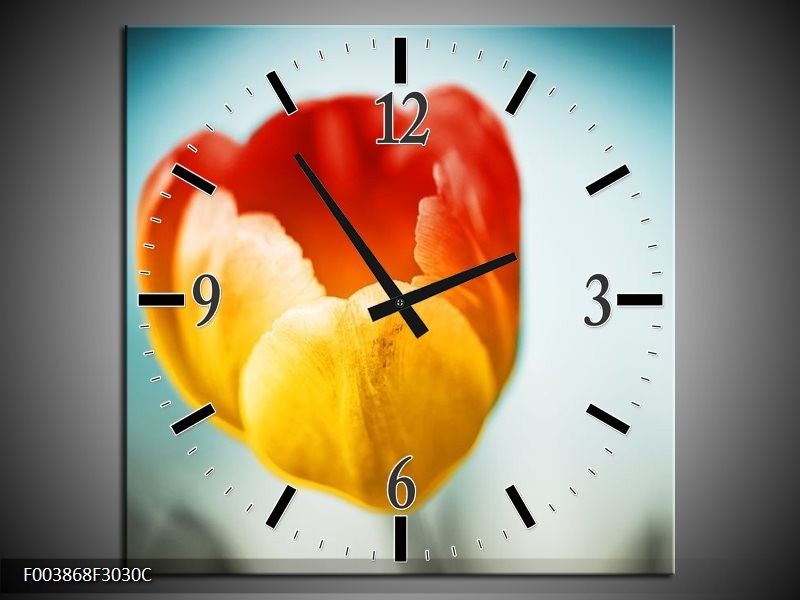 Wandklok op Canvas Tulp | Kleur: Oranje, Rood, Blauw | F003868C