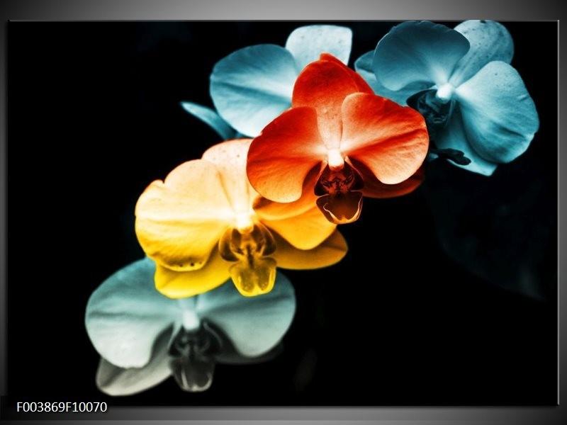 Foto canvas schilderij Orchidee | Oranje, Rood, Blauw