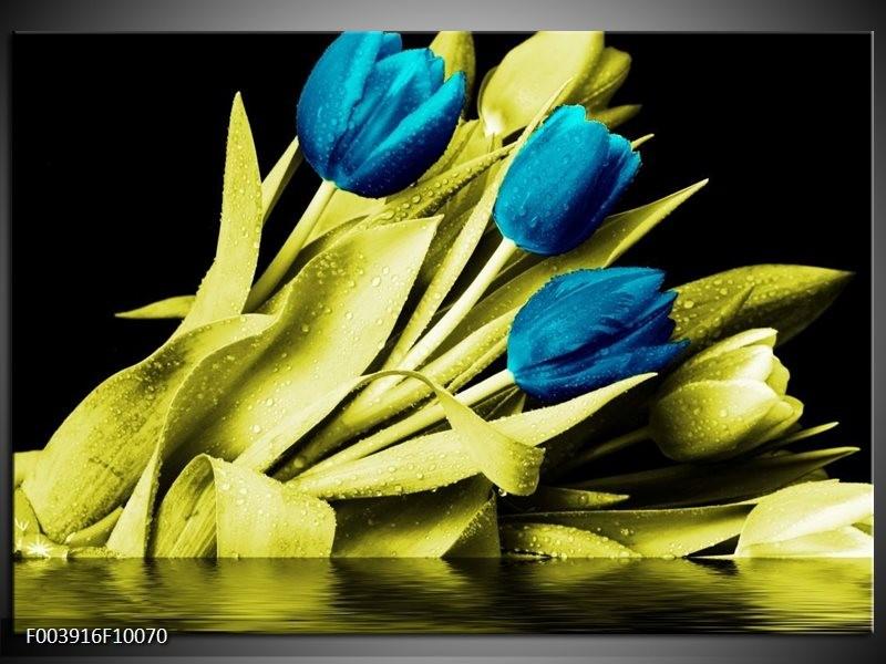Glas schilderij Tulp   Blauw, Groen, Zwart