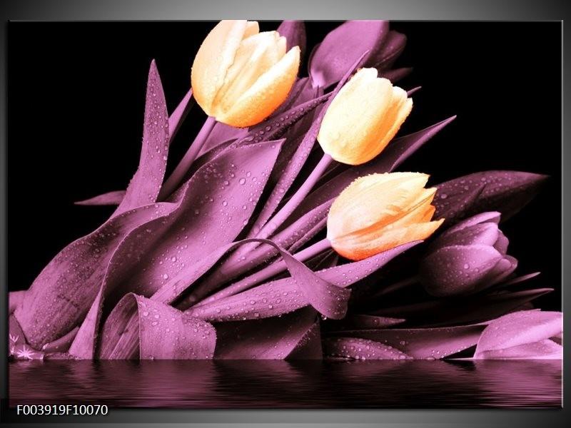 Foto canvas schilderij Tulp | Oranje, Paars, Zwart