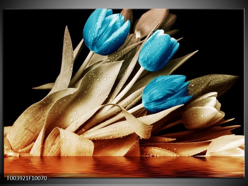 Foto canvas schilderij Tulp | Blauw, Zwart, Bruin