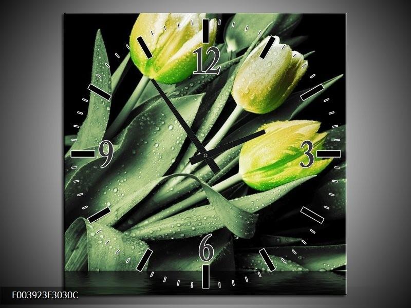 Wandklok op Canvas Tulp | Kleur: Groen, Zwart | F003923C