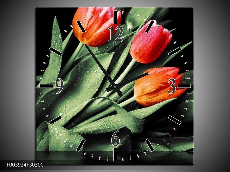 Wandklok op Canvas Tulp   Kleur: Rood, Oranje, Groen   F003924C