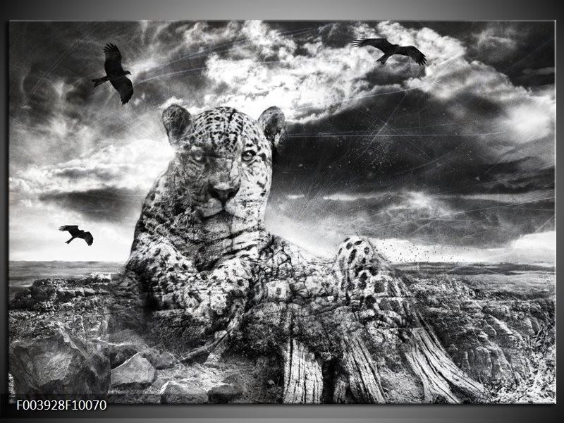 Foto canvas schilderij Natuur | Grijs, Wit, Zwart