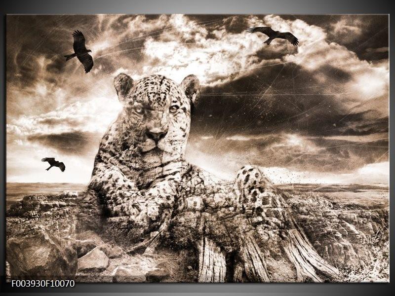 Foto canvas schilderij Natuur | Grijs, Wit