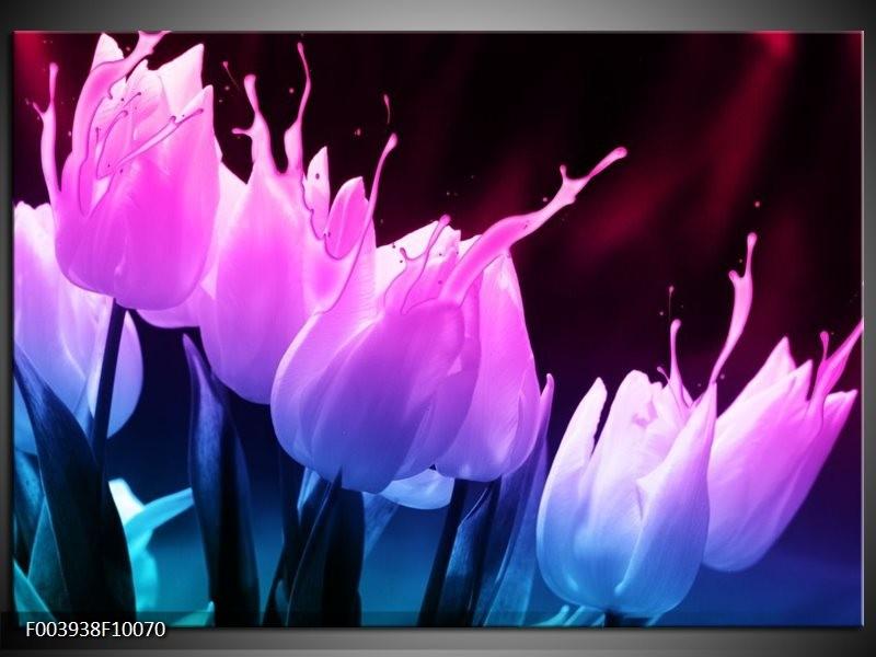 Glas schilderij Tulp | Paars, Roze, Blauw