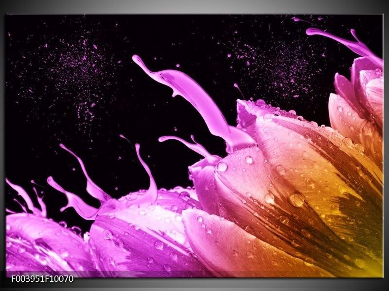 Foto canvas schilderij Tulp | Oranje, Zwart, Roze