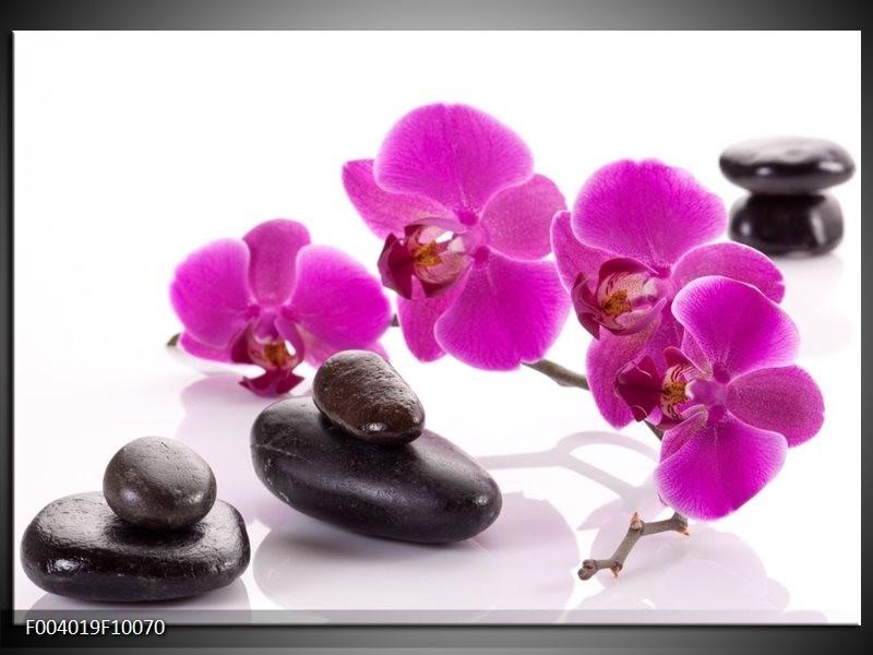 Glas schilderij Orchidee   Paars, Wit, Zwart
