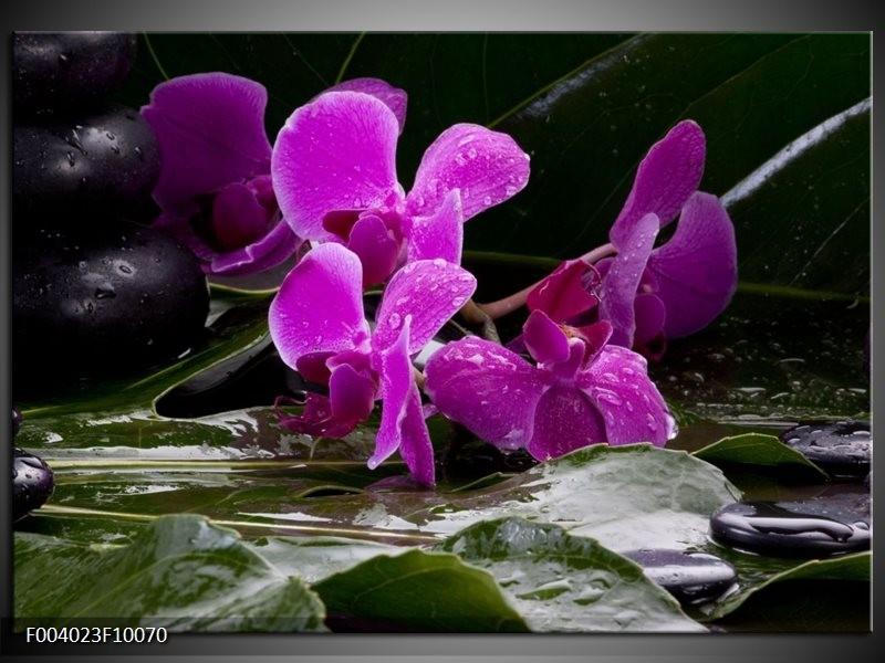Foto canvas schilderij Orchidee   Zwart, Roze, Grijs