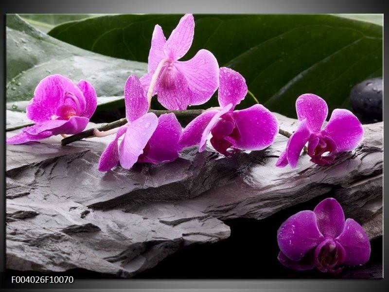 Glas schilderij Orchidee   Zwart, Roze, Grijs