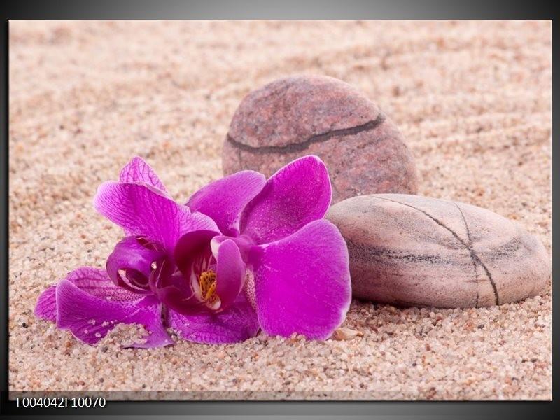 Foto canvas schilderij Orchidee | Paars, Geel, Bruin