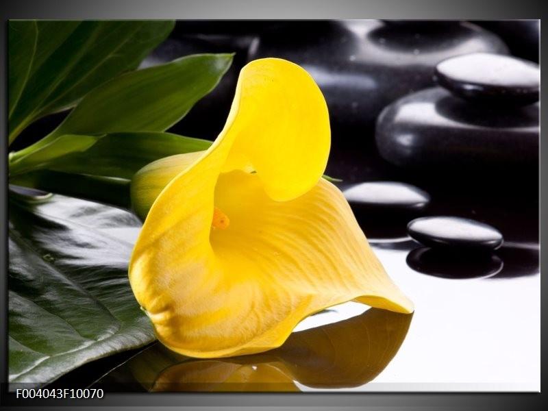 Glas schilderij Bloem | Geel, Zwart, Wit